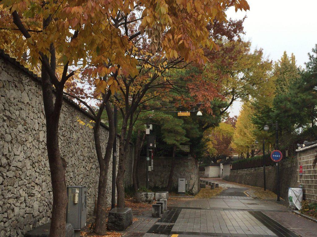 韓国ソウルの秋、紅葉の美しさ